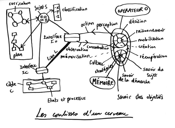 coulisse_cerveau.png